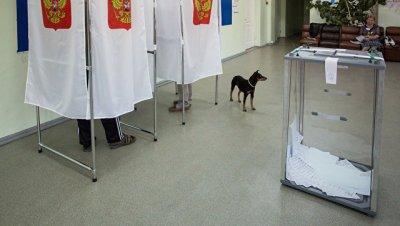 Более 95% военнослужащих и сотрудников Росгвардии проголосовали на выборах