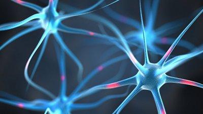 Ученые из России вычислили оптимальный путь для лечения болезни Альцгеймера