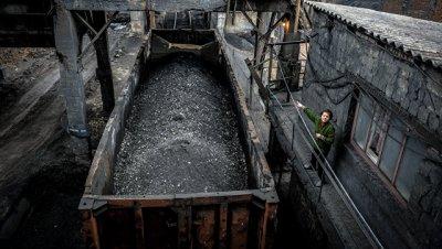 Министр энергетики Польши признал, что страна покупала уголь у Донбасса