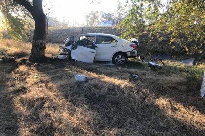 В Сальском районе водитель Toyota врезался в дерево: погибли двое мужчин