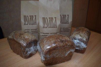 Фермер из хутора Ленина выращивает  уникальную древнерусскую пшеницу – полбу.