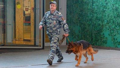 В Москве после звонков о