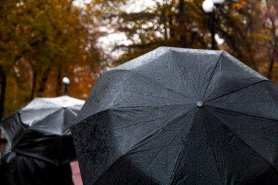 В Ростове на следующей неделе будет пасмурно и дождливо