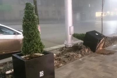 Полицейские задержали вандалов, опрокинувших елку в центре Ростова