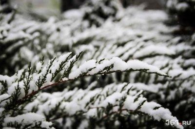 В первую рабочую неделю года в Ростове ожидается резкое похолодание