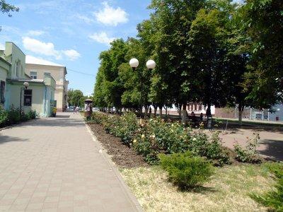 Шахтинцы просят Путина предотвратить застройку Александровского парка