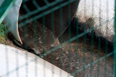 В Аксае возбудили уголовное дело в отношении предприятия, сбрасывавшего в водоём химические отходы