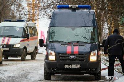 Ростовчанка ударила ножом сына, чтобы тот не ходил гулять
