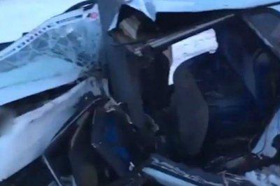 В Ростовской области погиб водитель автомобиля, протаранившего столб