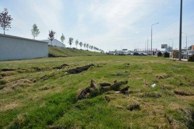 Ростовская администрация пообещала наказать водителей, испортивших газоны в новом парке
