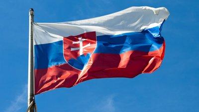 В Словакии задержали представителей правоэкстремистского движения