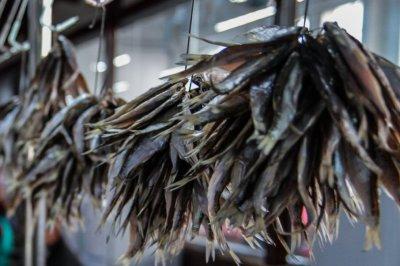 Двух ростовчан осудят за незаконную продажу краснокнижных осетров и икры