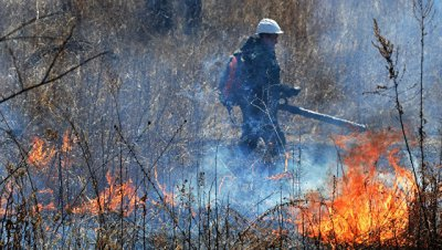 На Дальнем Востоке за сутки сгорело свыше 30 тысяч гектаров леса
