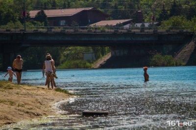 На берег Дона выбросило мертвую рыбу