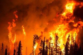 РЕКОМЕНДАЦИИ по вопросу предотвращения пожаров в весенне-летний период