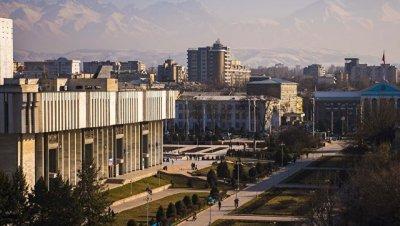 Десятки жителей Бишкека организовали пикет у мэрии