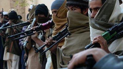 В Кабуле не возражают против участия талибов* в московской встрече