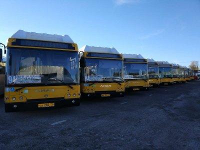 Война перевозчиков: в Ростове два предприятия пустили автобусы по одному маршруту