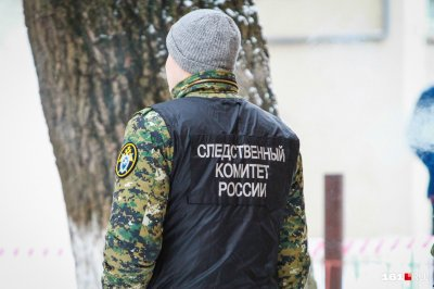 Замерз насмерть: следком возбудил уголовное дело после обнаружения мертвого младенца в Ростове=
