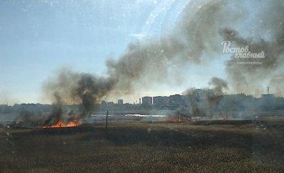 В Ростовской области загорелось поле камыша