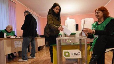 В Грузии оппозиция заявила о более 800 нарушений на выборах президента