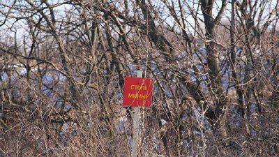 В Донбассе в 2018 году на минах подорвались 25 украинских военных