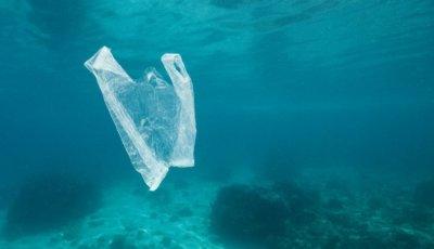 Океанские глубины превратились в «урны» для пластиковых отходов