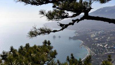 В Крыму оценили слова Шредера о законности присоединения полуострова