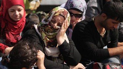 В Армении пресекли канал незаконной миграции из Ирака в Европ
