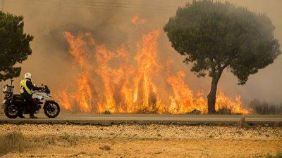 На острове Гран-Канария из-за природных пожаров эвакуировали тысячу человек