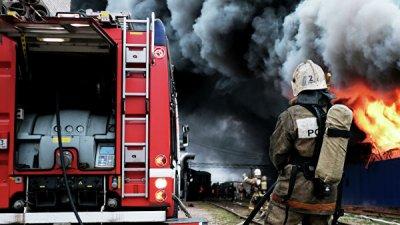 Греция обратилась к ЕС за помощью в тушении пожара на Эвбее