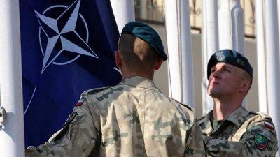 Киев не будет подавать заявку на получение плана по членству в НАТО