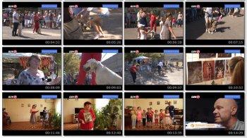 Выпуск информационной программы Белокалитвинская Панорама от 12 сентября 2019 года