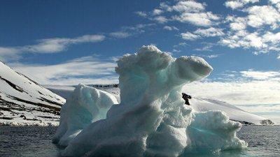 Исландия пригласит Путина на планируемый саммит Арктического совета