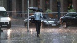 Как спрятаться от дождя, если забыл зонт?!