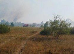 В Белокалитвинском районе вновь разгорелся лесной пожар