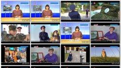 Выпуск информационной программы Белокалитвинская Панорама от 29 сентября 2020 года