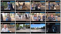 Выпуск информационной программы Белокалитвинская Панорама от 27 октября 2020 года