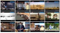 Выпуск информационной программы Белокалитвинская Панорама от 10 ноября 2020 года