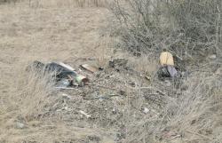 В Белой Калитве обнаружены мини-свалки возле обочин дорог