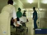 В Воронежской области 46 человек заболели геморрагической лихорадкой