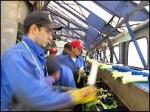 Испания приглашает 180 тыс. иностранных рабочих
