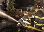 Подросток погиб при попытке спасти котов из огня