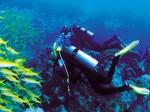 Стали известны имена российских дайверов, пропавших в Красном море