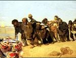 Европе грозят засуха и болезни