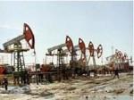 Руководство ОПЕК решило немедленно сократить объемы добычи нефти