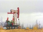 Глобальное потепление спровоцировало падение цен на нефть