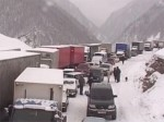 Транскавказскую автомагистраль очистят от мандаринов к утру