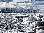 К 2040 году льды Арктики полностью растают