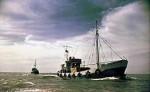 На островах Красного моря ведется поиск пропавших дайверов из России